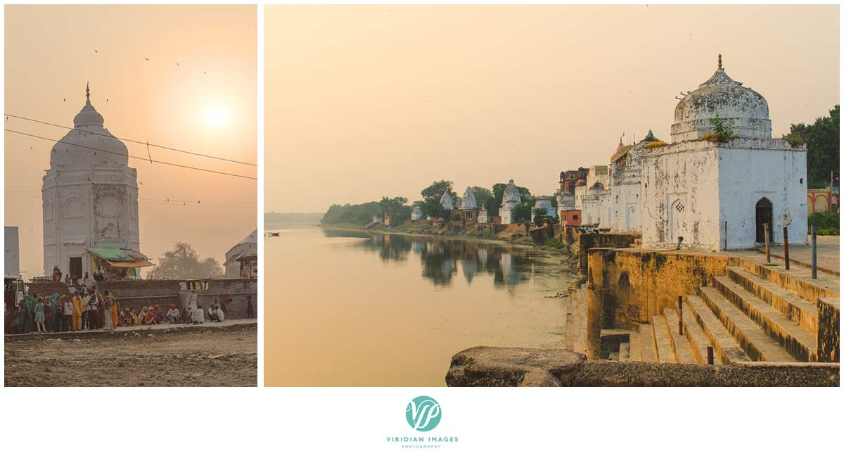 India_Chambal_Safari_Viridian_Images_photo_21