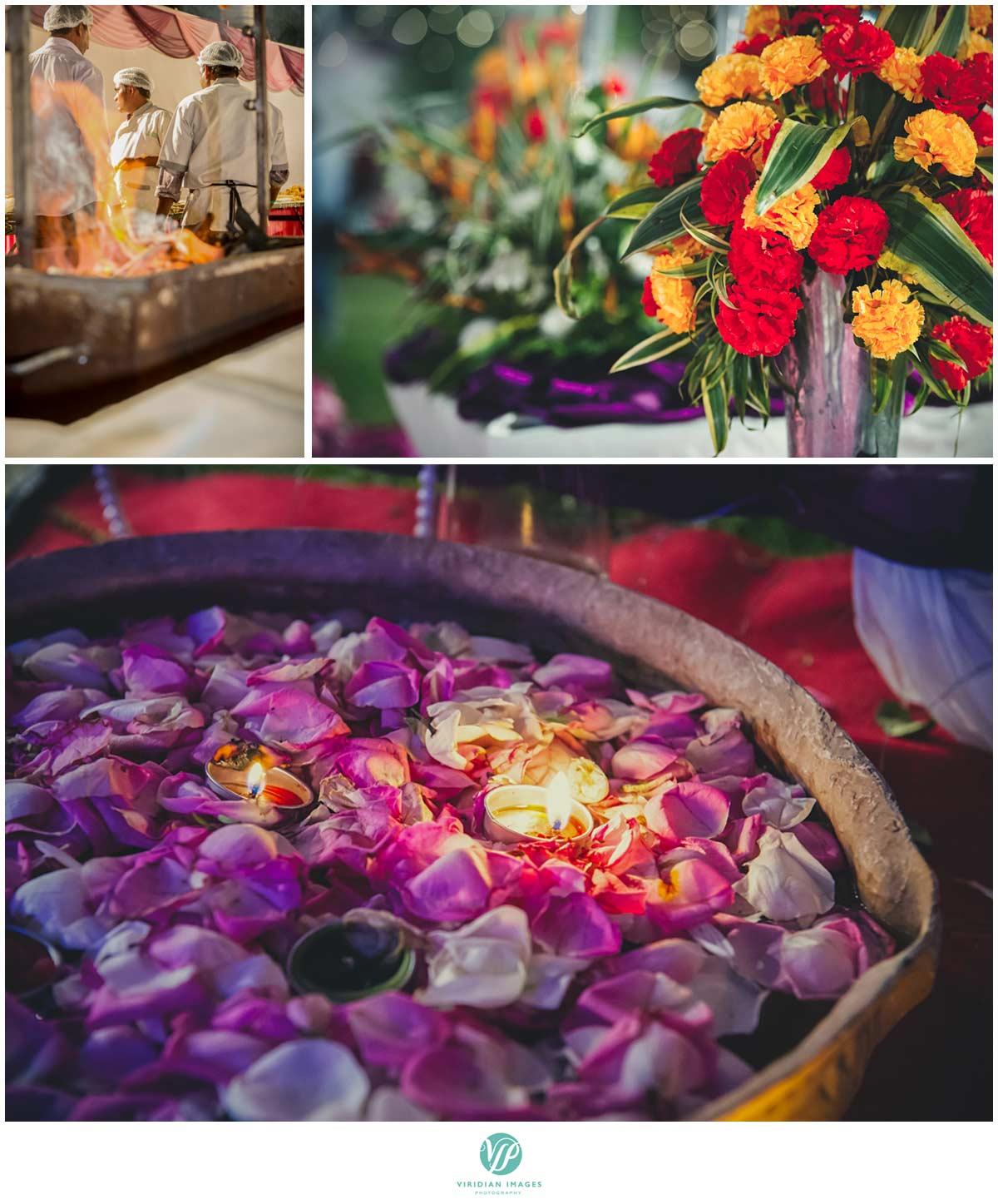 India_Pinjore_Garden_Reception_Viridian_Images_Photography_poto_4