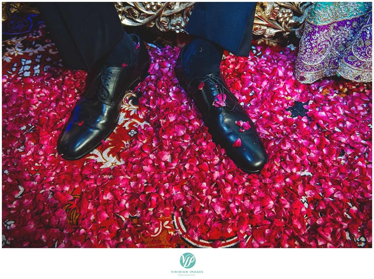 India_Pinjore_Garden_Reception_Viridian_Images_Photography_poto_9