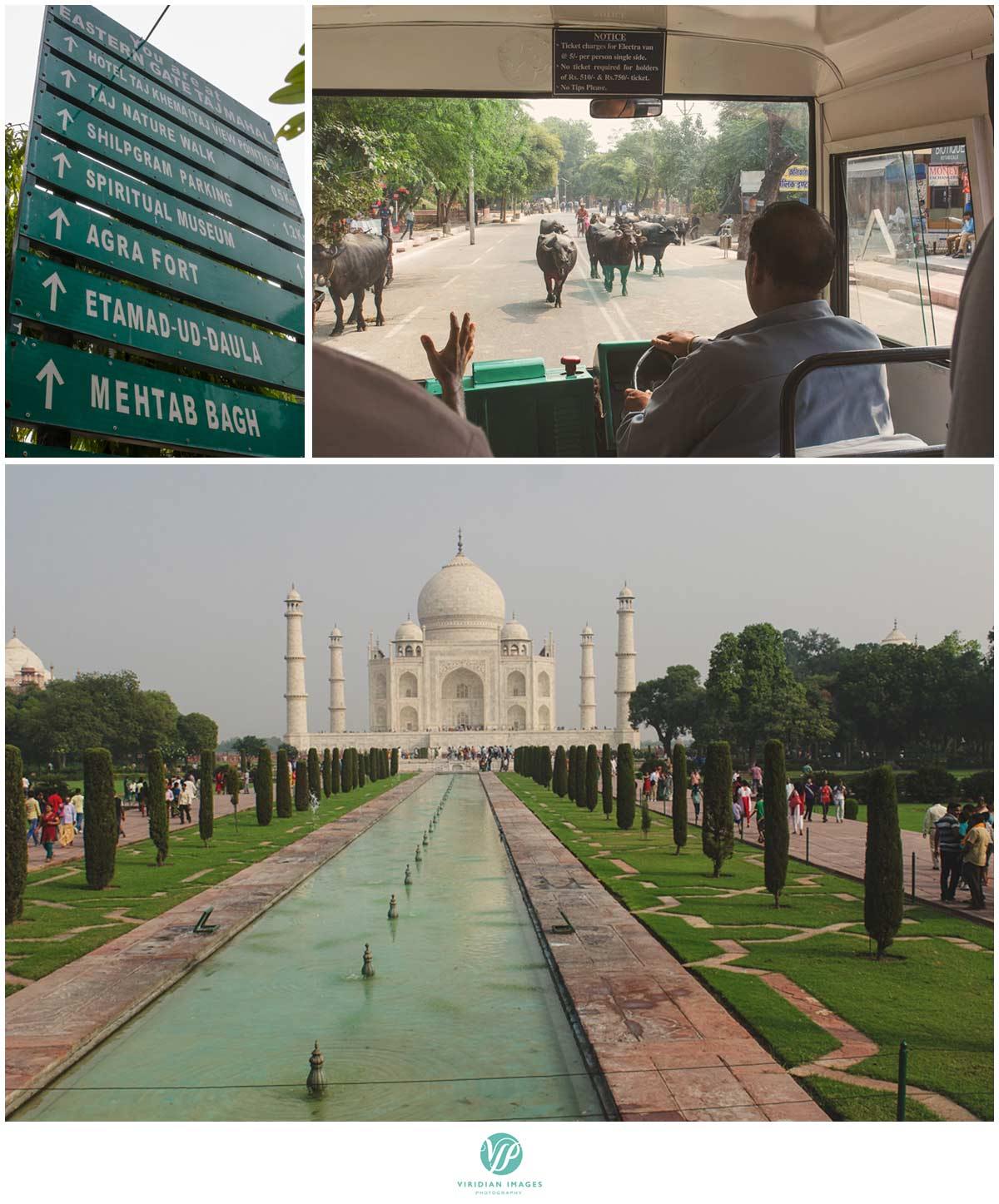 India_Taj_Mahal_Agra_Fort_Viridian_Images_photo_23
