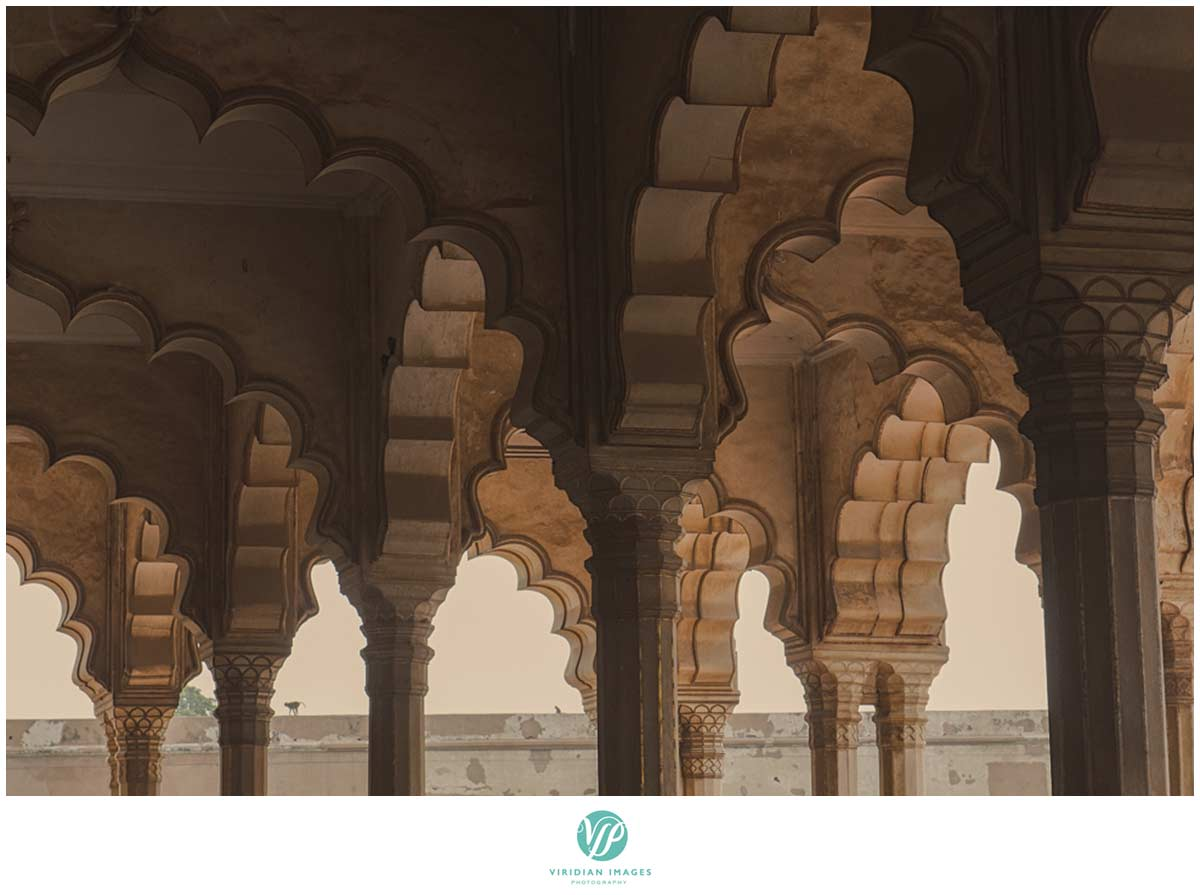 India_Taj_Mahal_Agra_Fort_Viridian_Images_photo_27