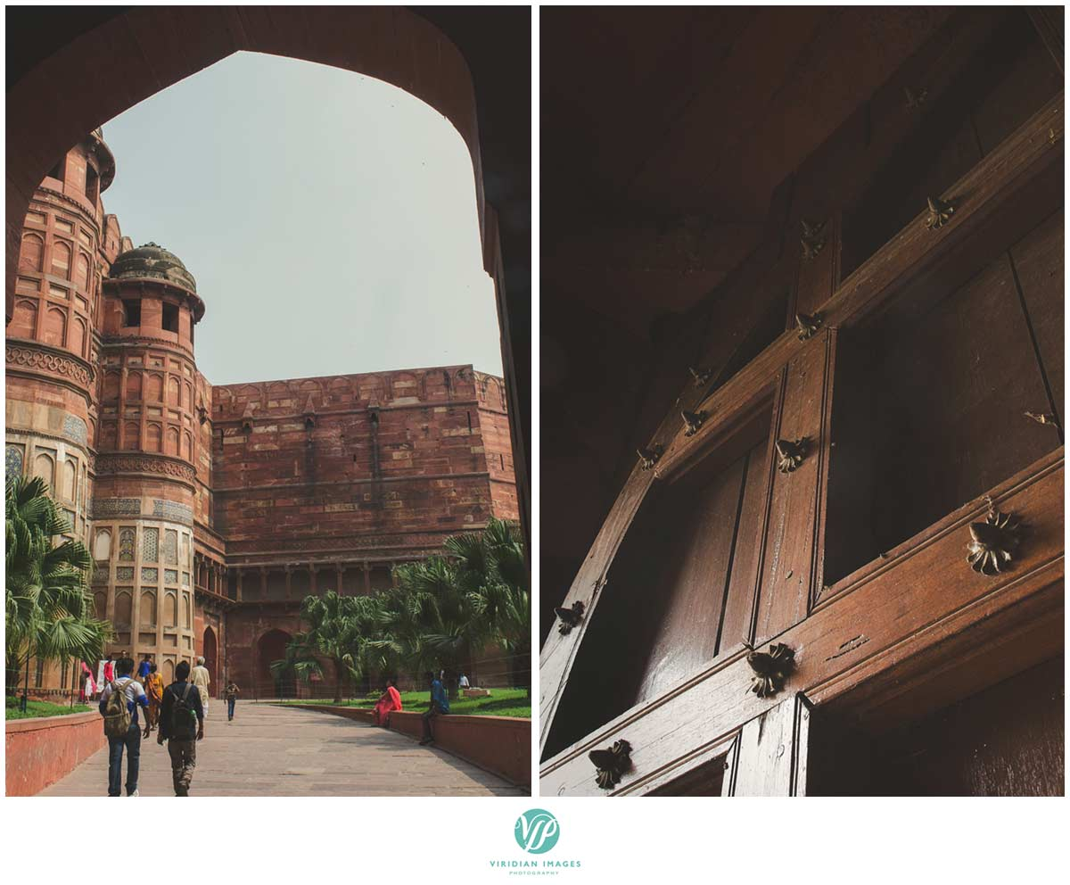 India_Taj_Mahal_Agra_Fort_Viridian_Images_photo_28