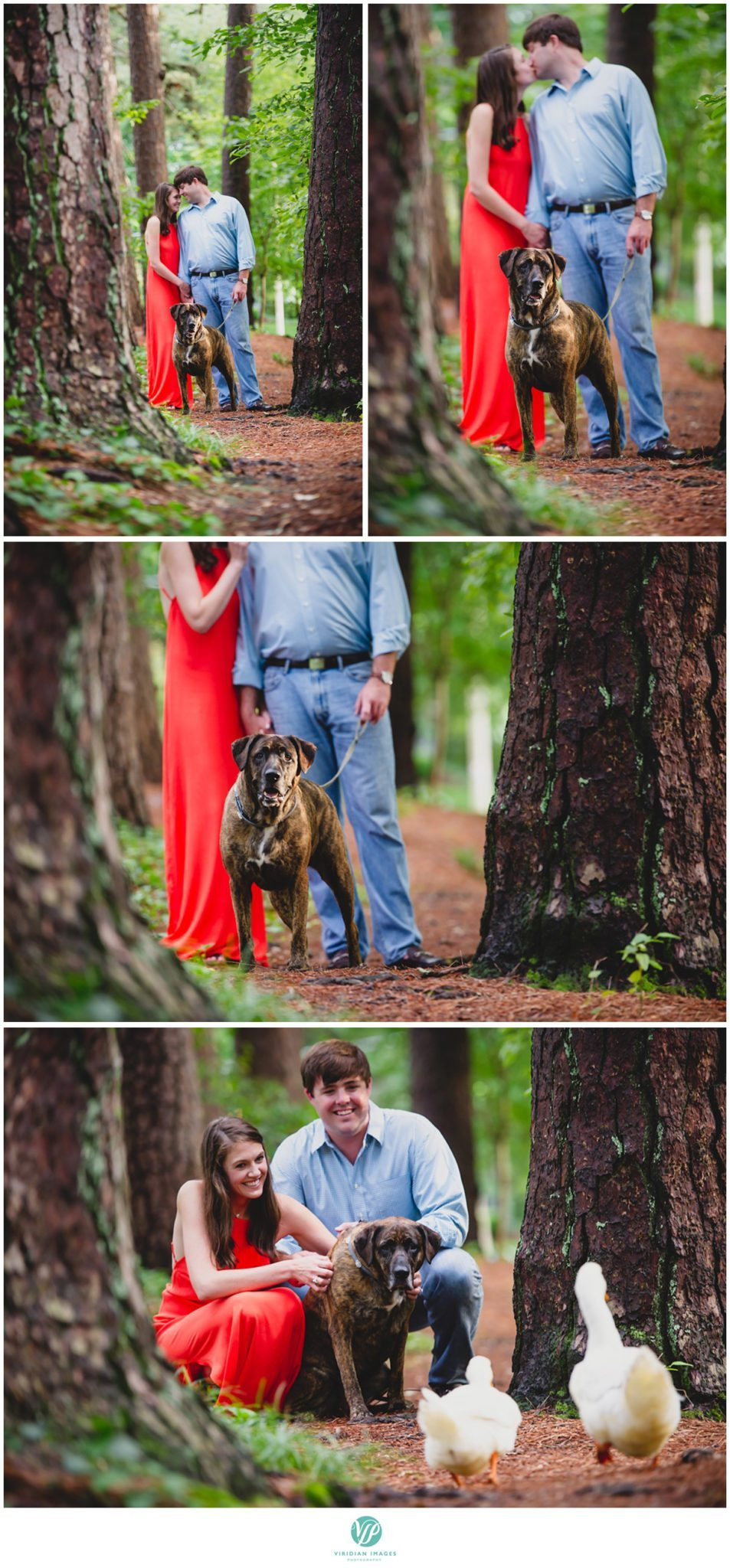 Atlanta-duck-poind-engagement-session-viridian-images-photography-photo-18