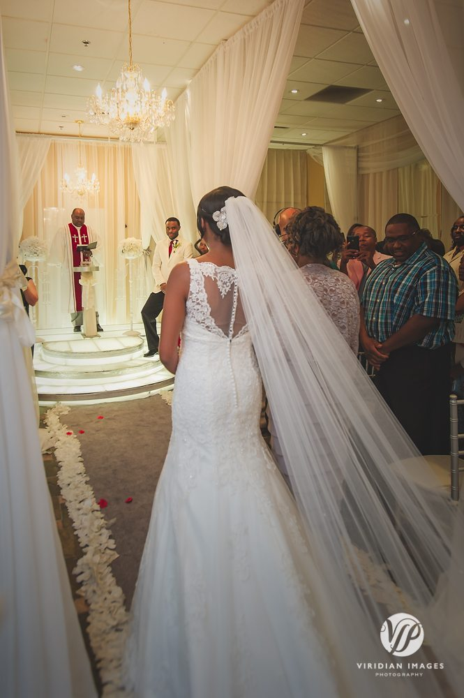 Duluth-wedding-sneak-peek-viridian-images-photography-9
