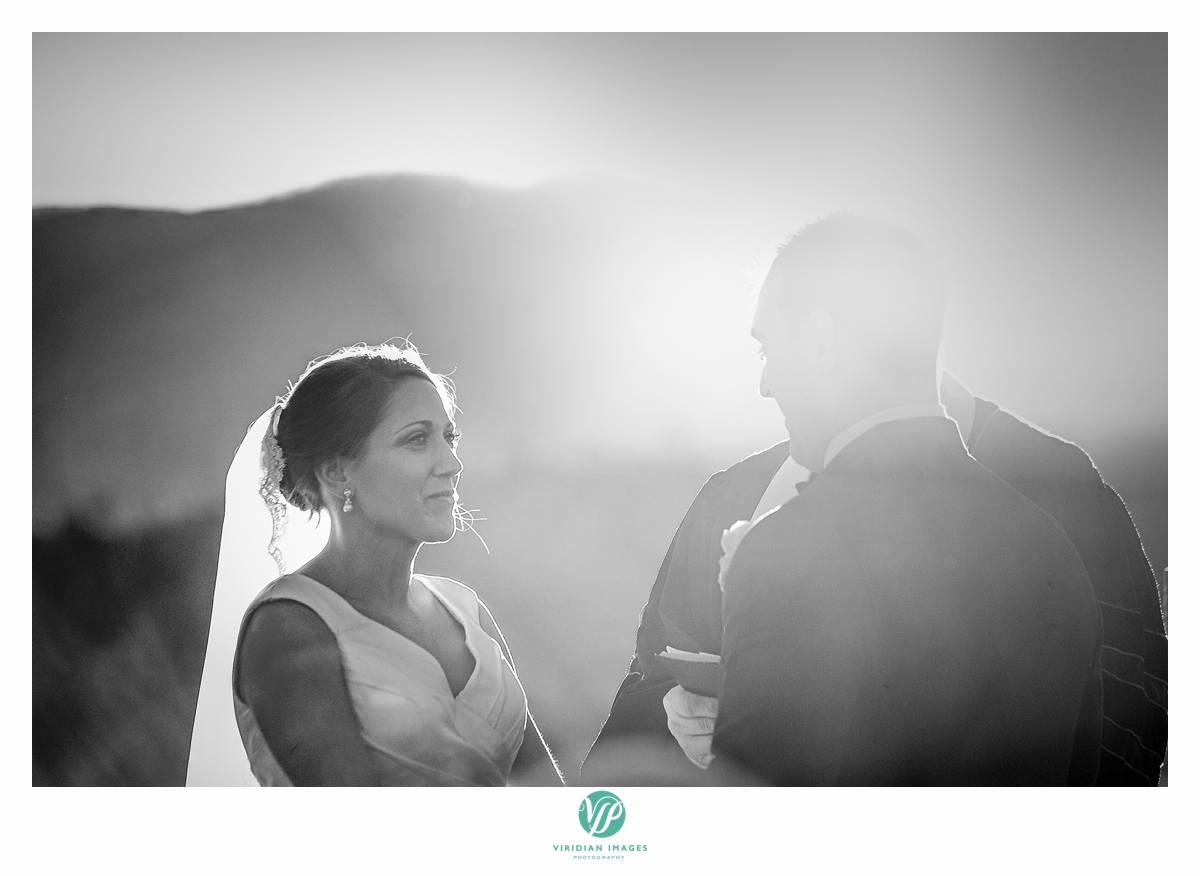 Viridian_Images_Photography_2015 Weddings 5_photo