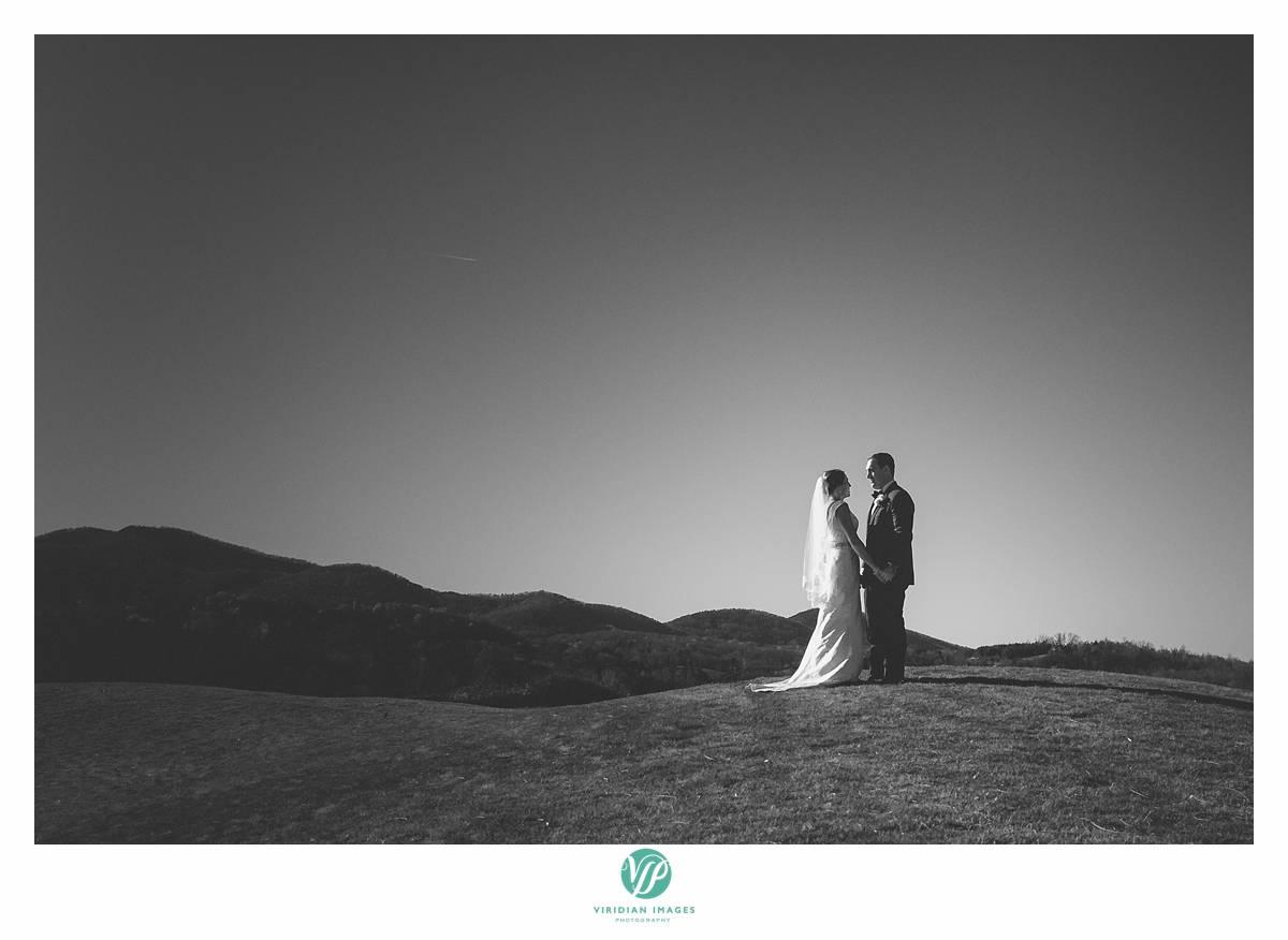 Viridian_Images_Photography_2015 Weddings 6_photo