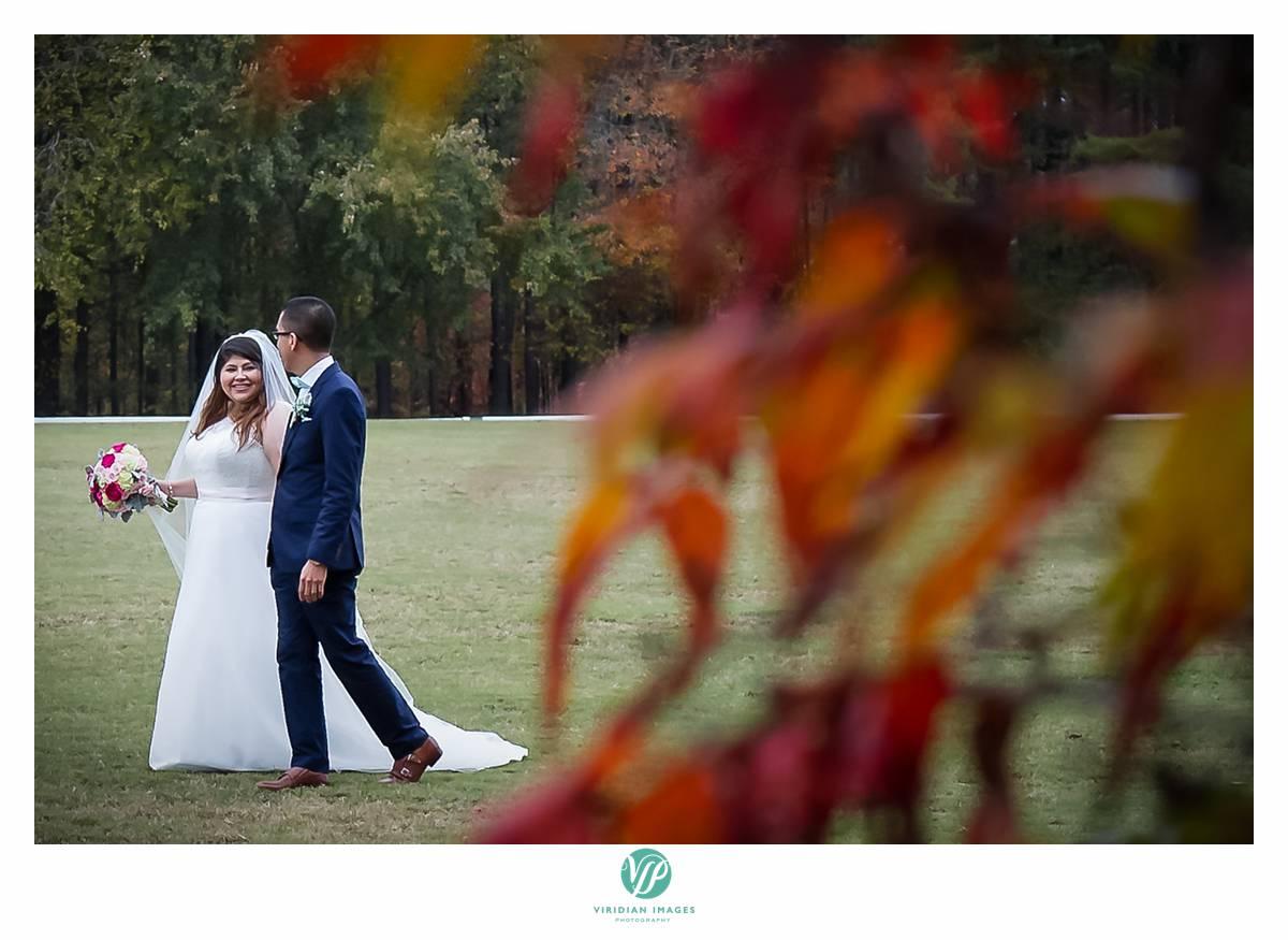 Viridian_Images_Photography_2015 Weddings 9_photo