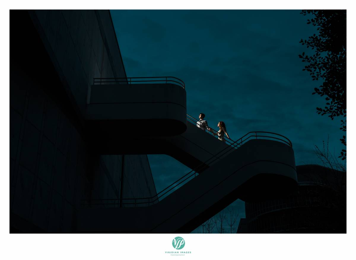 Emory-University-Atlanta-Engagement-Jibran-Leia-Viridian-Images-Photography-photo 26