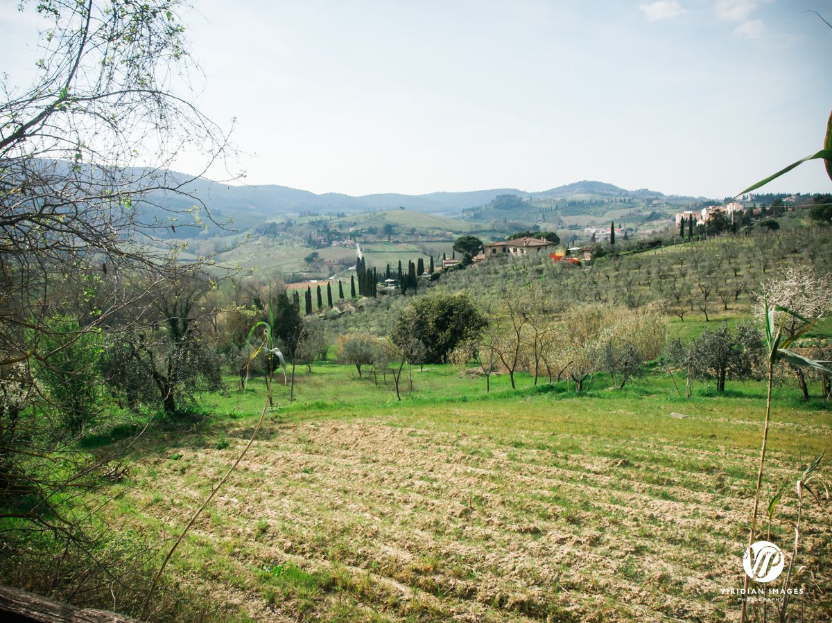 Italy-Tuscany-San-Gimignano-Viridian-Images-Photography-photo 10
