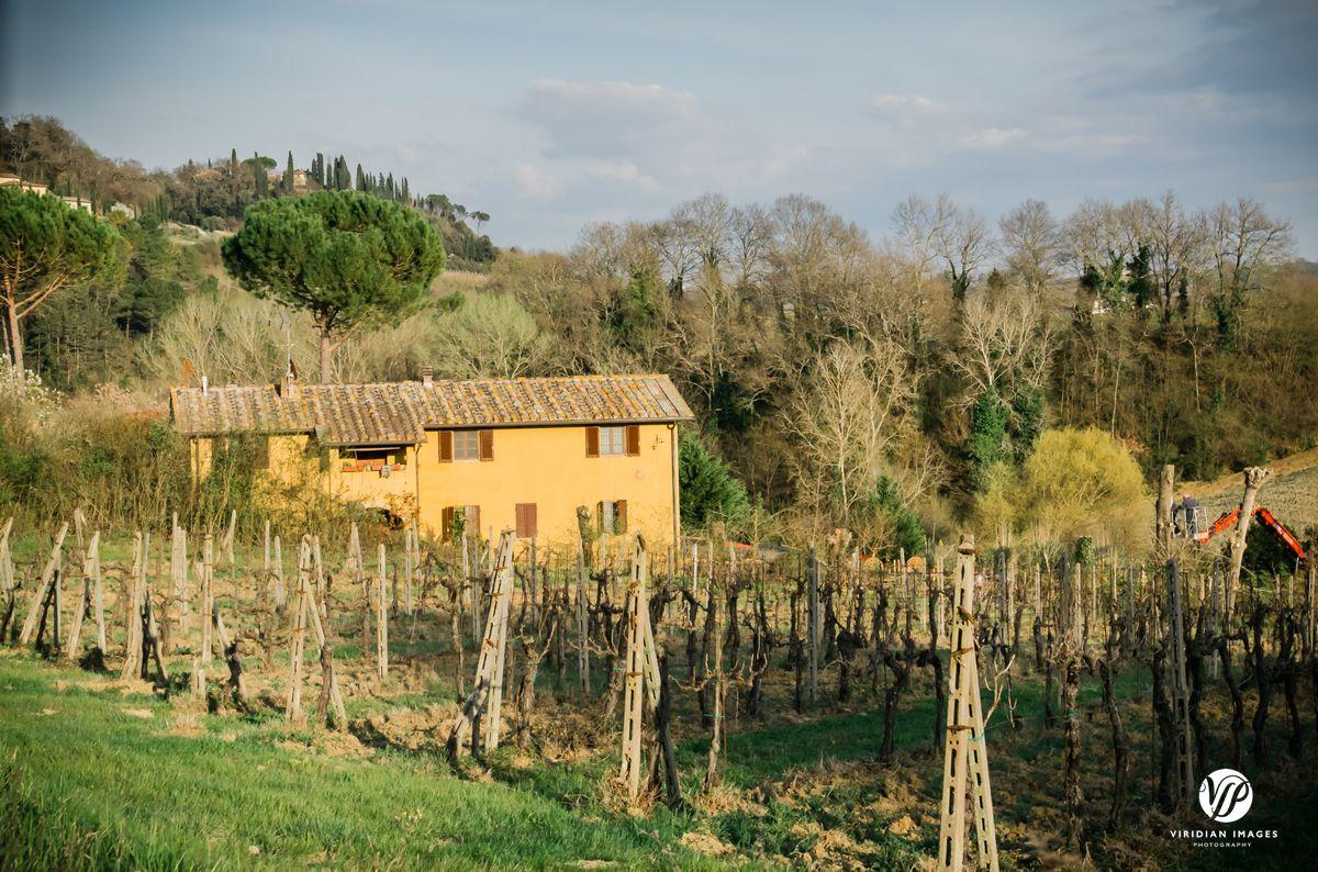 Italy-Tuscany-San-Gimignano-Viridian-Images-Photography-photo 14