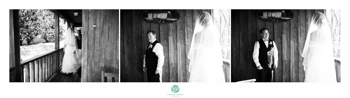 Retreat-at-Hiawassee-river-wedding-Viridian-Images-Photography 10