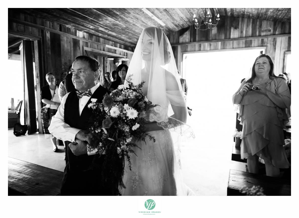 Retreat-at-Hiawassee-river-wedding-Viridian-Images-Photography 18