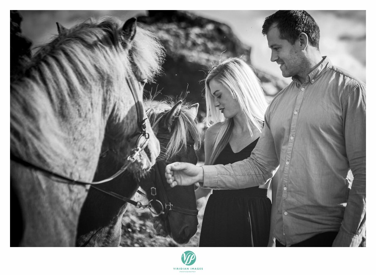 iceland-engagement-destination-horses-viridian-images-photography-8