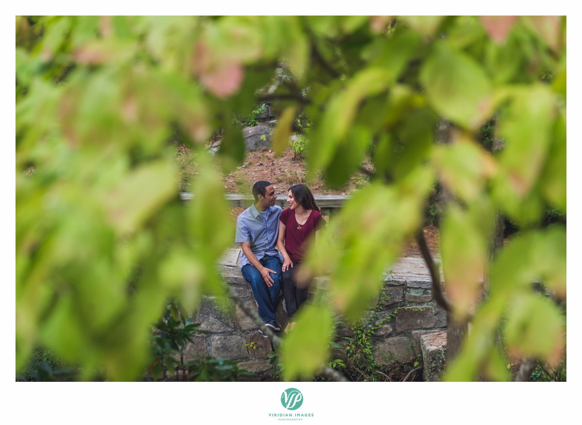 peeking through leaves at couple in stone mountain