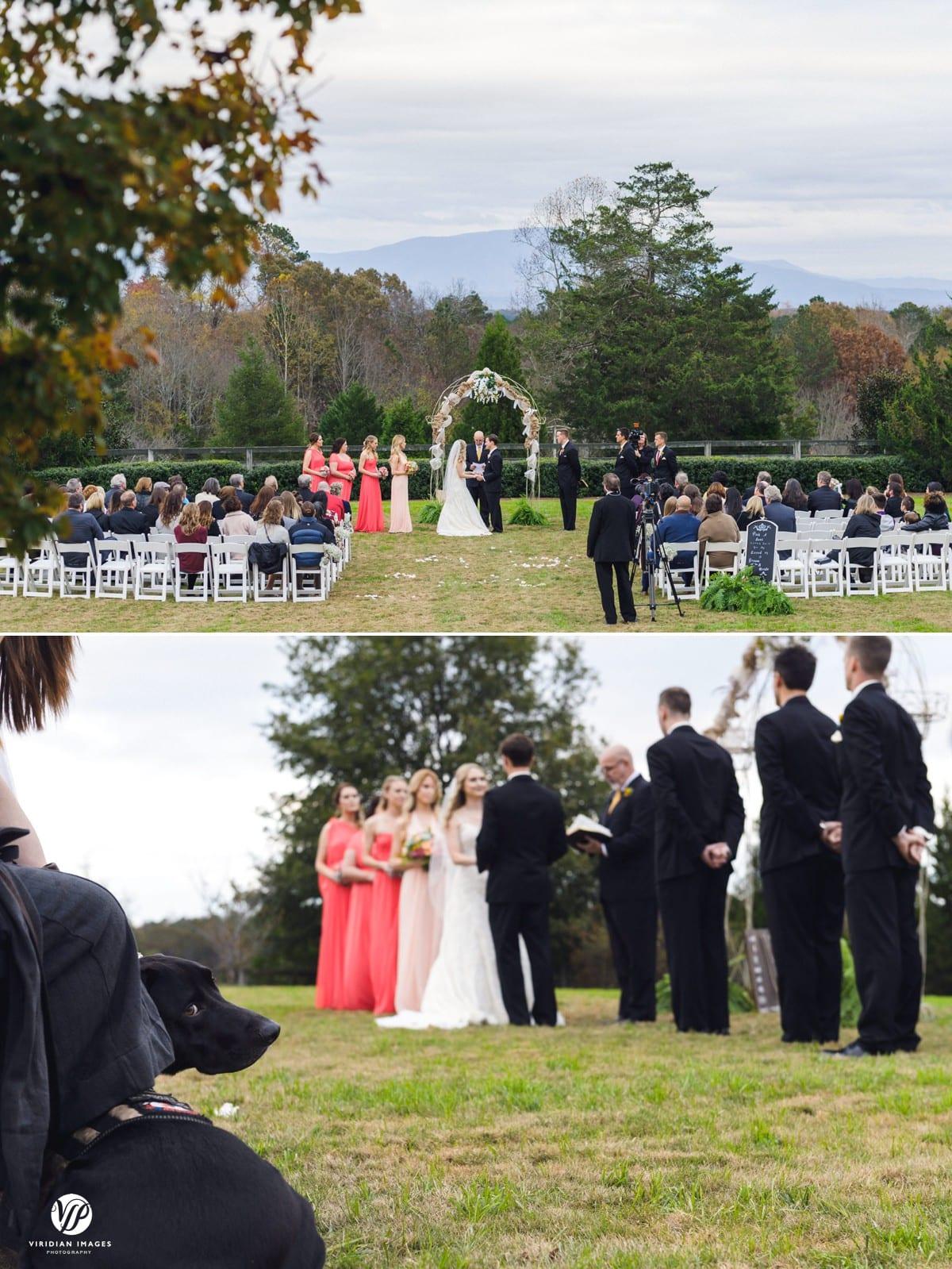 Wedding Ceremony with service dog Walnut Hill Farm Dalton GA