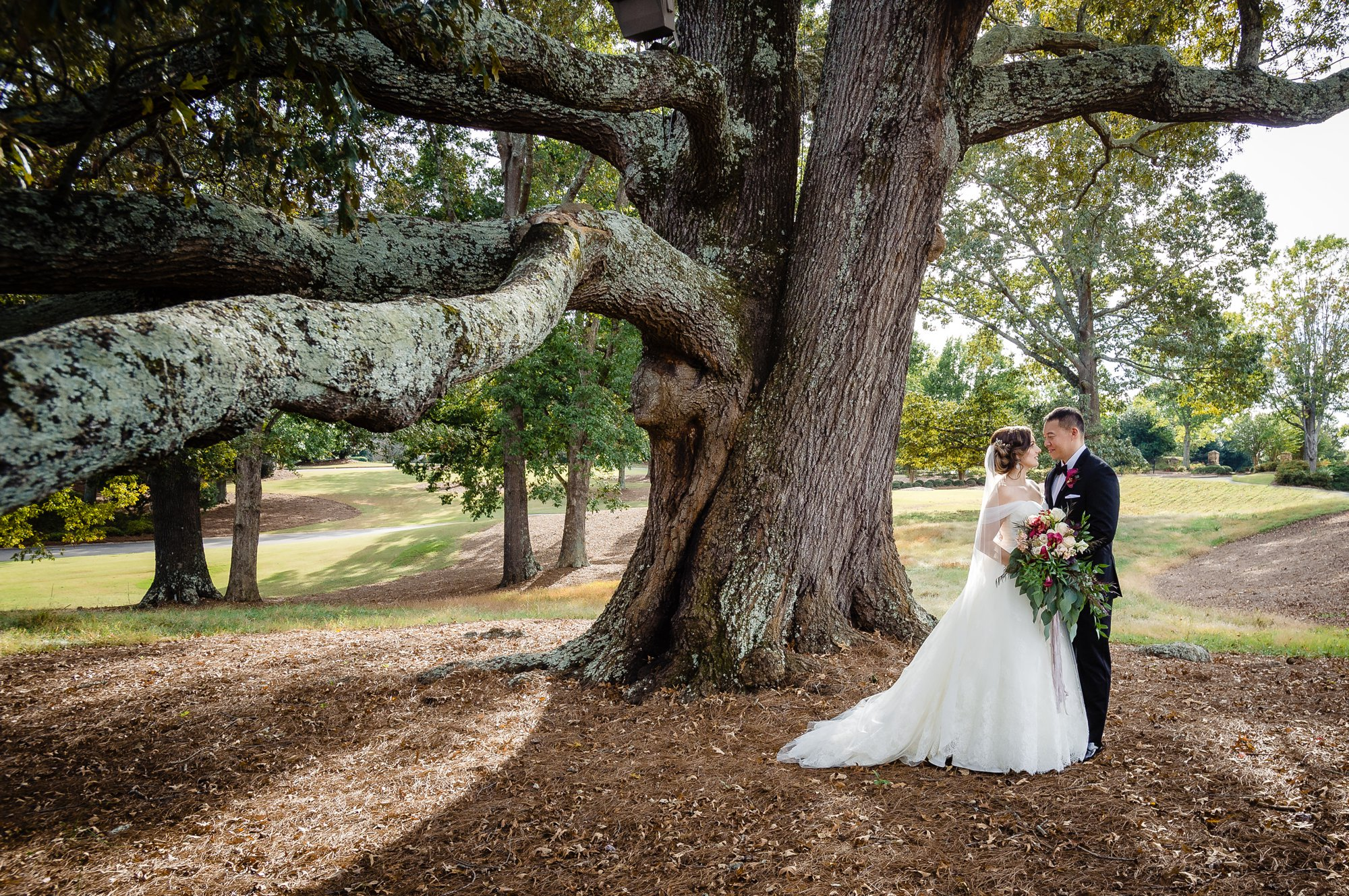 bride and groom portrait under large oak tree