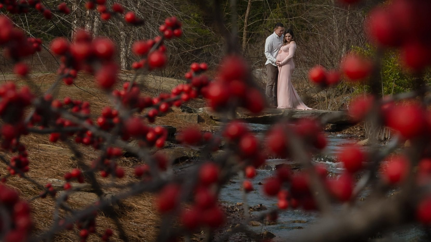 red berry winter maternity photo